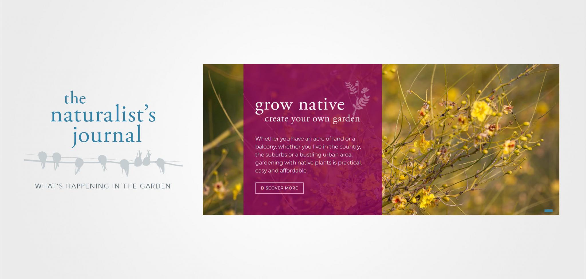 Eco Branding Website Graphics for the Gottlieb Native Garden