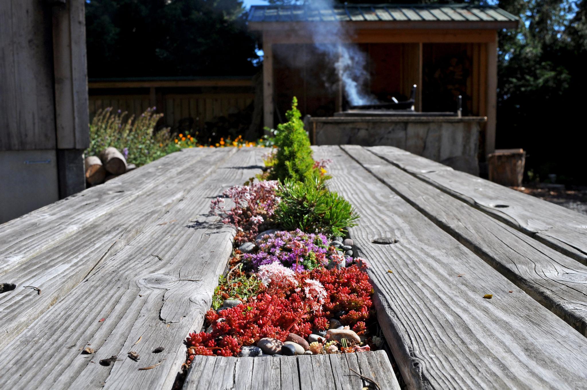 Smoking Food at Willows Inn Restaurant - Environmental Storytelling