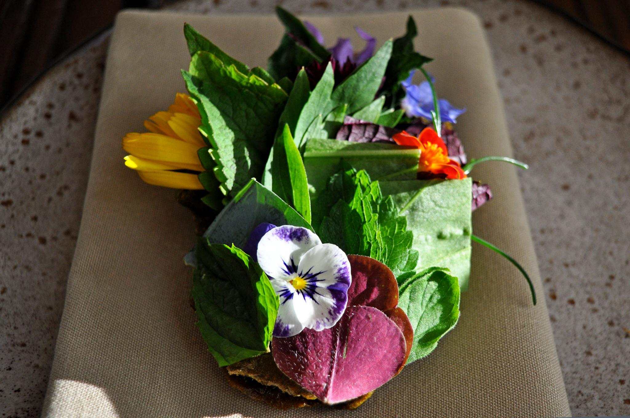 Food at Willows Inn Restaurant - Environmental Storytelling