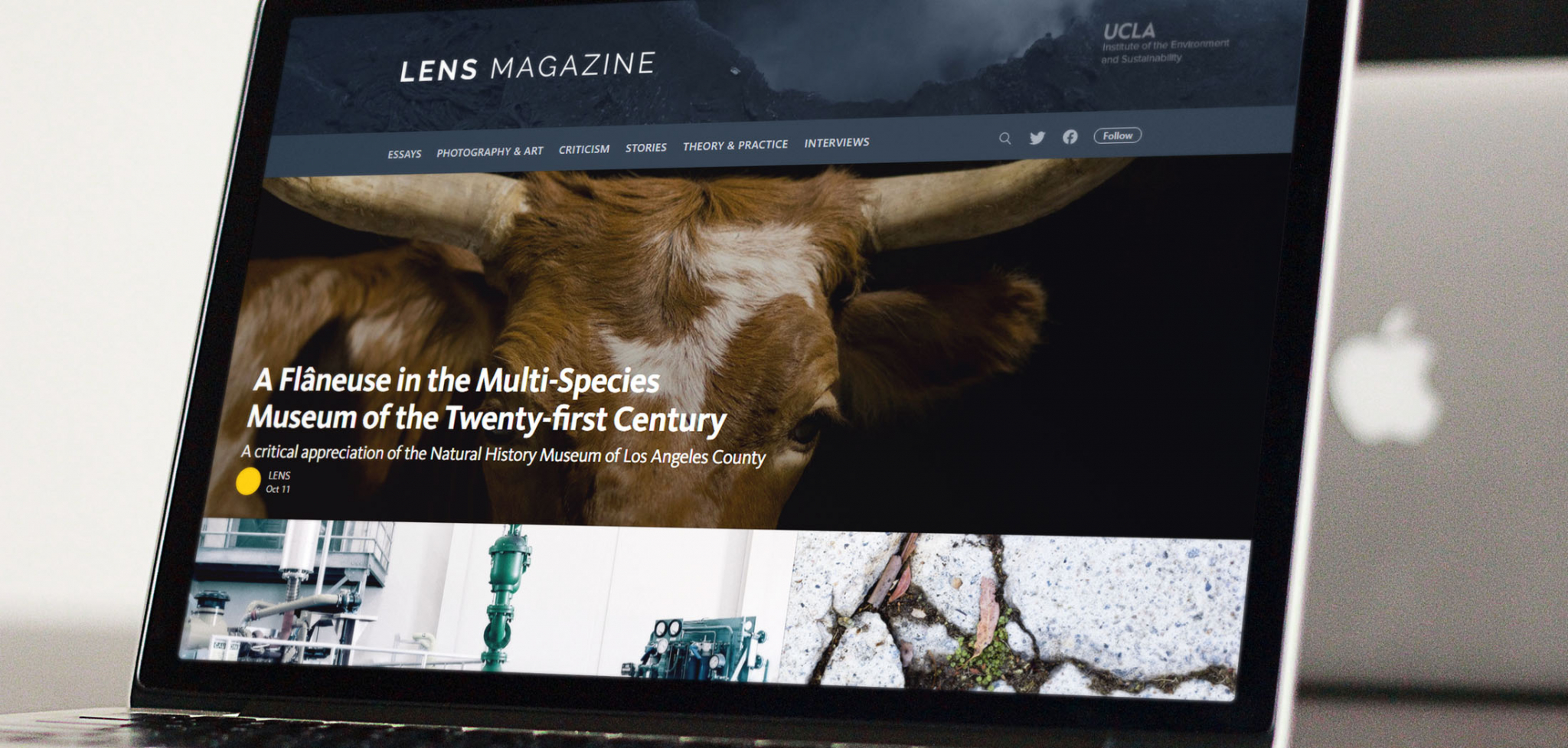 Website for UCLA Lab for Environmental Narrative Strategies
